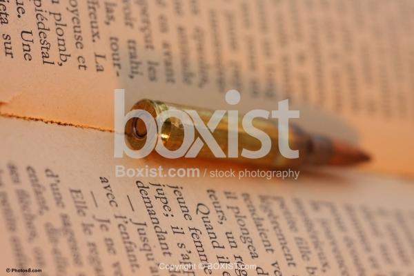 Bullet Inside Book