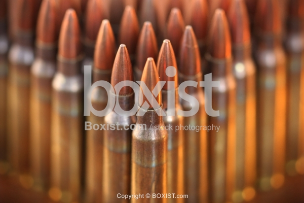 Bullets Lined Up