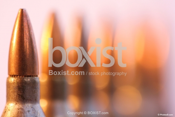 Assault Rifle Bullets