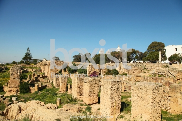Punic Houses on Byrsa Hill Carthage Destroyed by the Romans