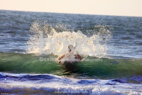 Swimmer and Wave Splash