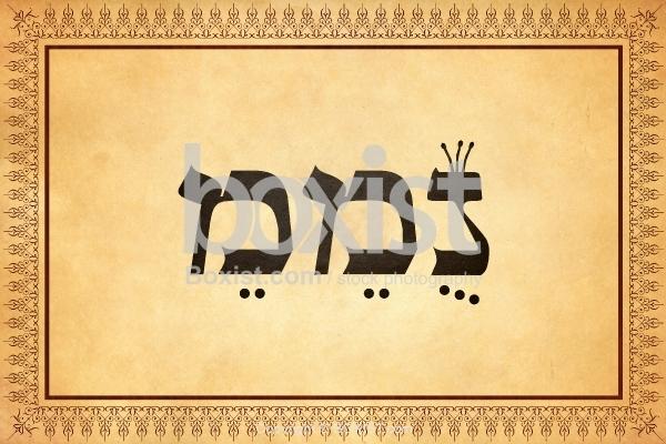 Lovable in Kabbalah Letters of Nemem