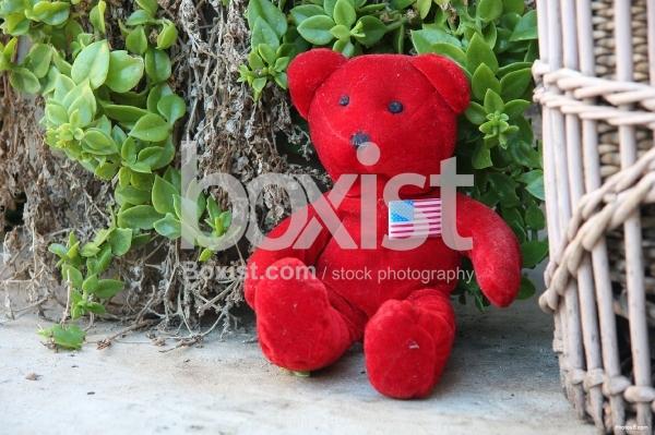 Old Red Teddy Bear