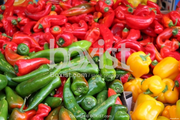 Types of Pepper in the Market