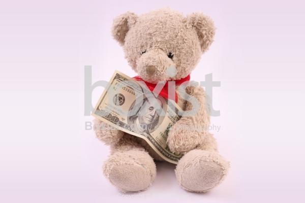 Teddy Bear Holding 100 Dollars Bill