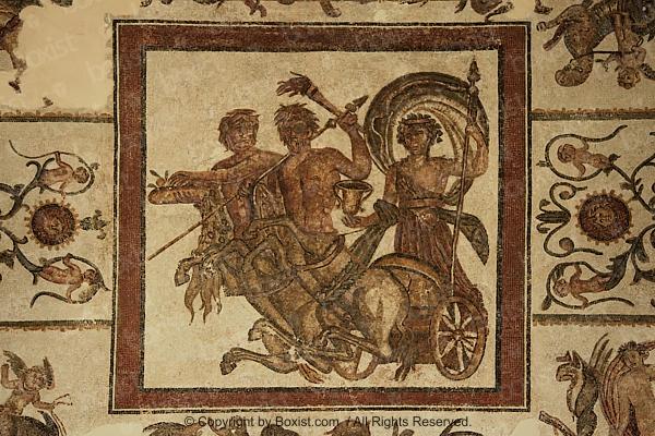 Chi Calligraphy