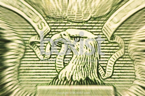 Magnification Of Eagle Head On One Dollar Note