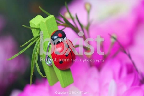 Ladybug Laundry Clip