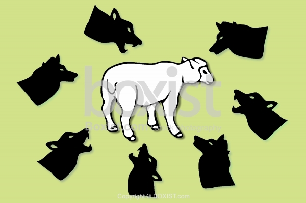 Sheep Surrounded By Wolves