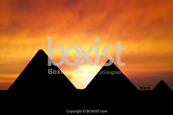 Giza Pyramids At Sunset