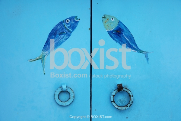 Painting of Fish on Metal Door
