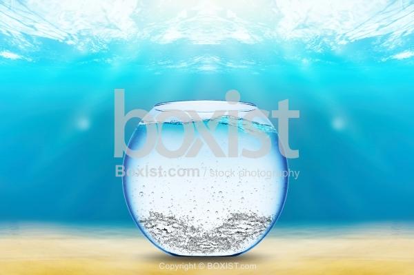 Fish Bowl Underwater