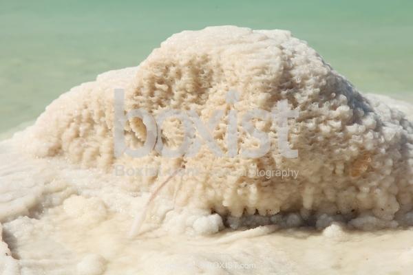 Crystalic Salt On Rock On Beach In The Dead Sea