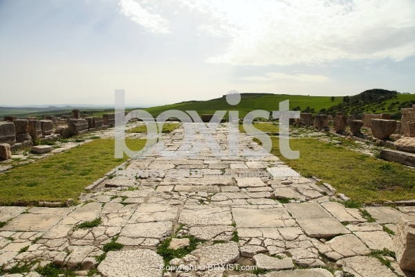 View Of Large Courtyard In Dougga Archaeological Site