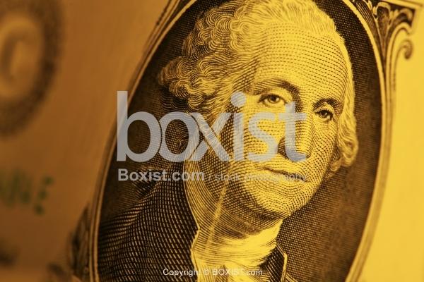 Portrait President George Washington On One Dollar