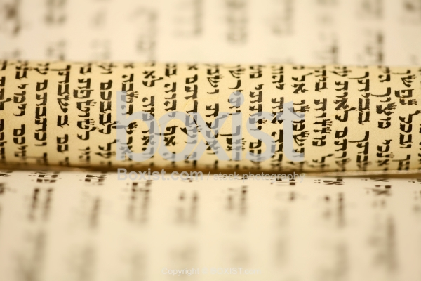 Rolled Hebrew Torah Small Scroll