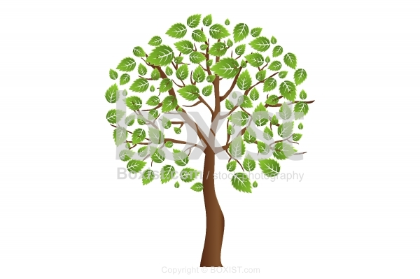 Tree Clipart Covered With Green Leaves