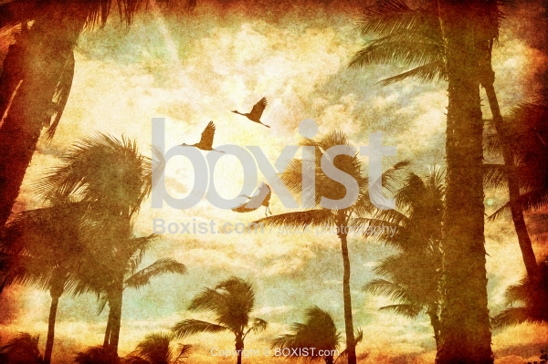 Tropical Palm Trees With Flying Birds In Vintage Style