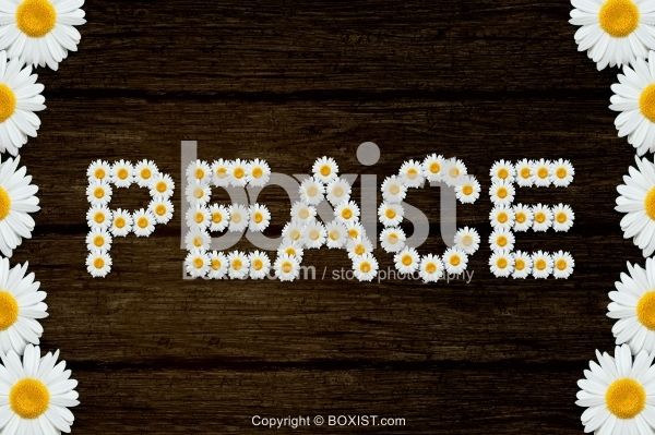 Peace Word With Flowers On Wood