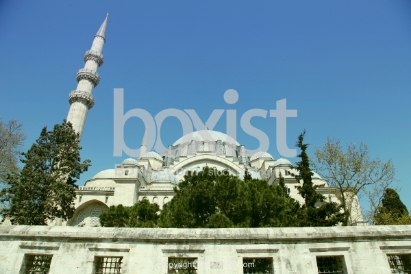 Exterior Back View Of The Suleymaniye Mosque
