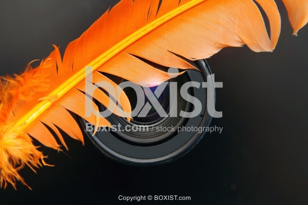 Orange Feather On Camera Lens