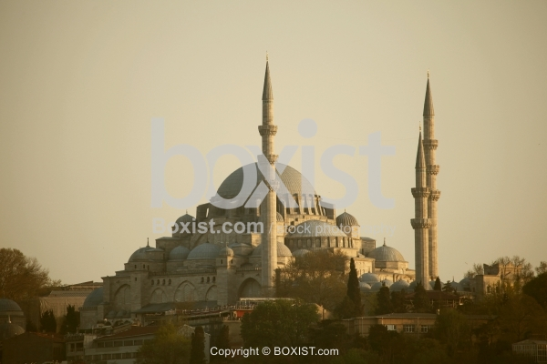 The Magnificent Suleymaniye Mosque In Istanbul