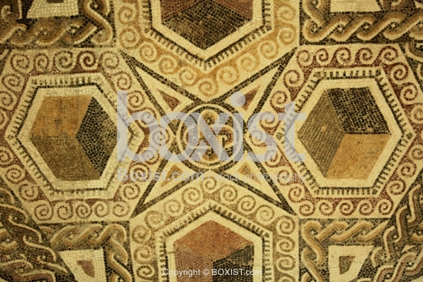 Ancient Roman Geometric Mosaic
