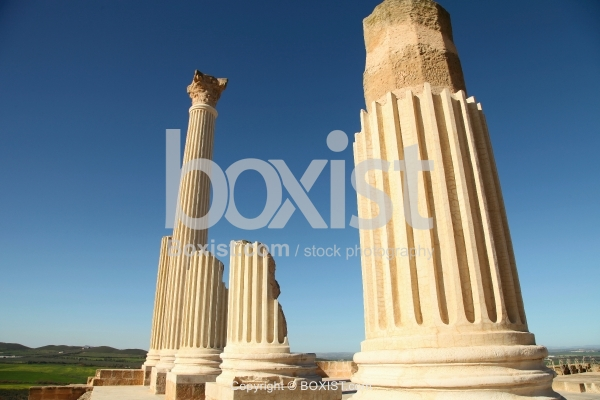 Roman Columns Ruins Site at Uthina in Tunisia