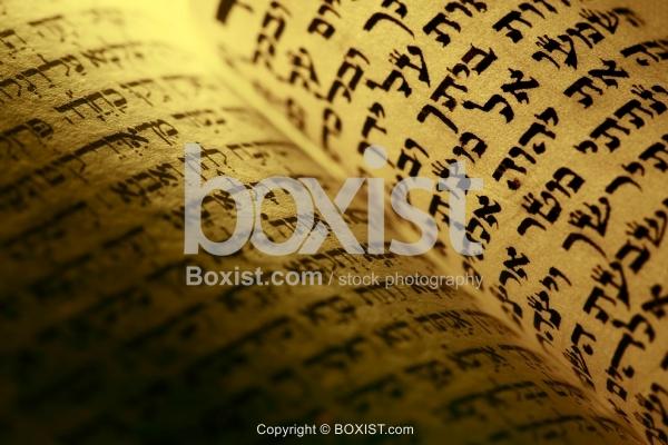 Page Closeup From Hebrew Torah