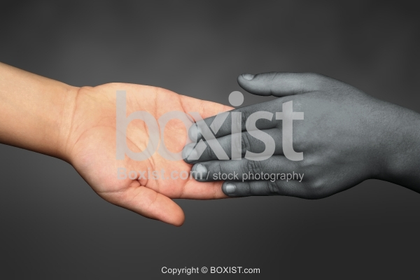 Black and White Hands Touching Each Other.