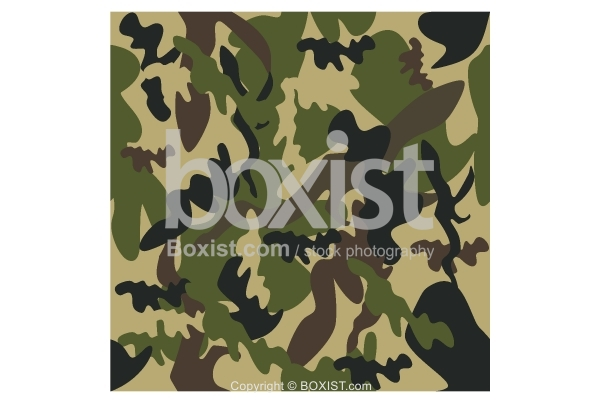 Piece of Camouflage Seamless Pattern