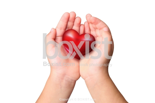 Two Hands Holding Small Love Heart