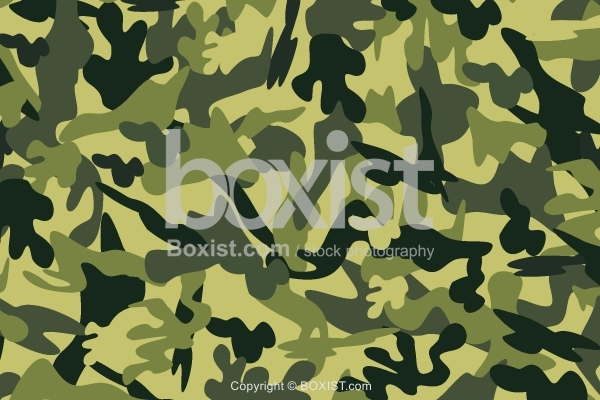 Forest Mixed Camouflage Background