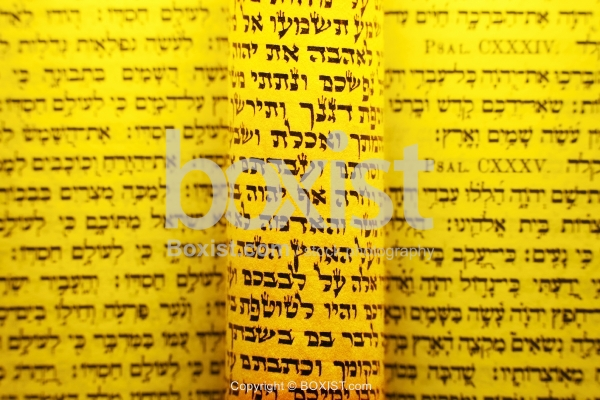 Rolled Jewish Hebrew Scrolls From The Torah