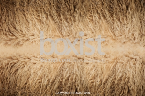 Natural Sheep Fur Background
