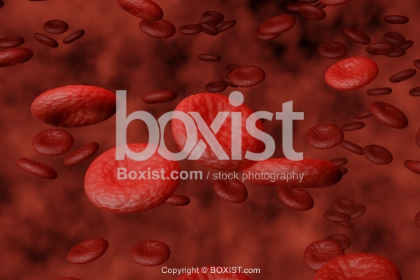 Dimensional Design Of Blood Red Cells In Human Body