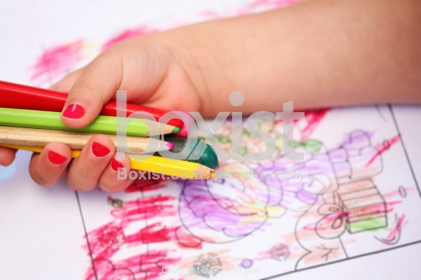 Child Hand Holding Colored Pencils