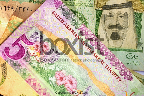 Saudi Arabian Riyal Money