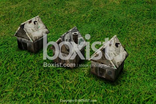 3D Money Houses On Green Grass.