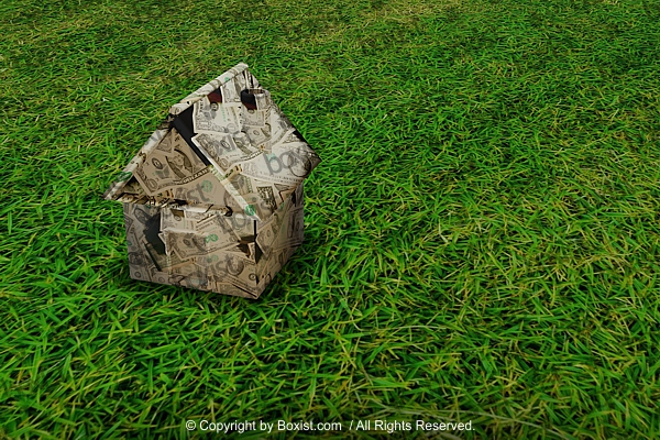 Design of 3D Money House On Green Grass