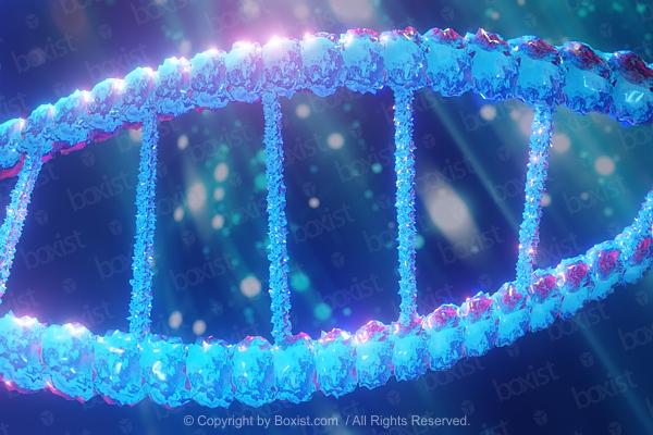 DNA Structure Concept Design