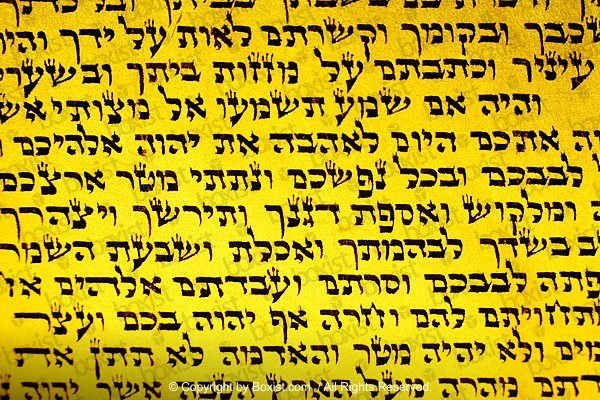 Torah Page In Hebrew Language