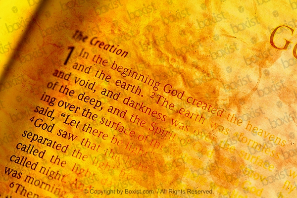In The Beginning God Created Page From Bible