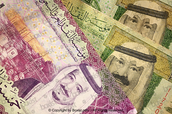Saudi Riyal Money Notes