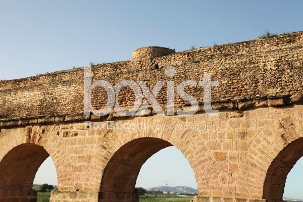 The Ancient Aqueduct of Carthage