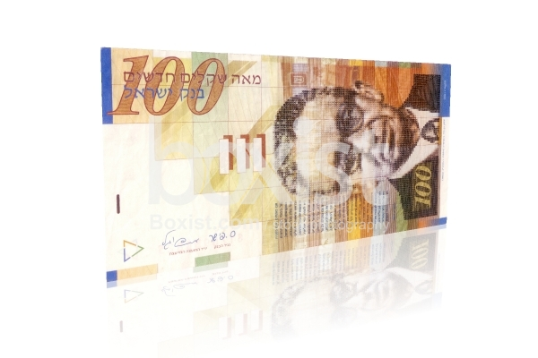100 Israeli New Shekel Bill